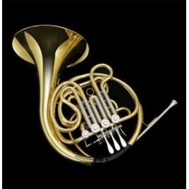 I.M.GRASSI FH210 double french horn F-BB