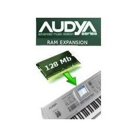 RAM 128mb za Ketron Audya